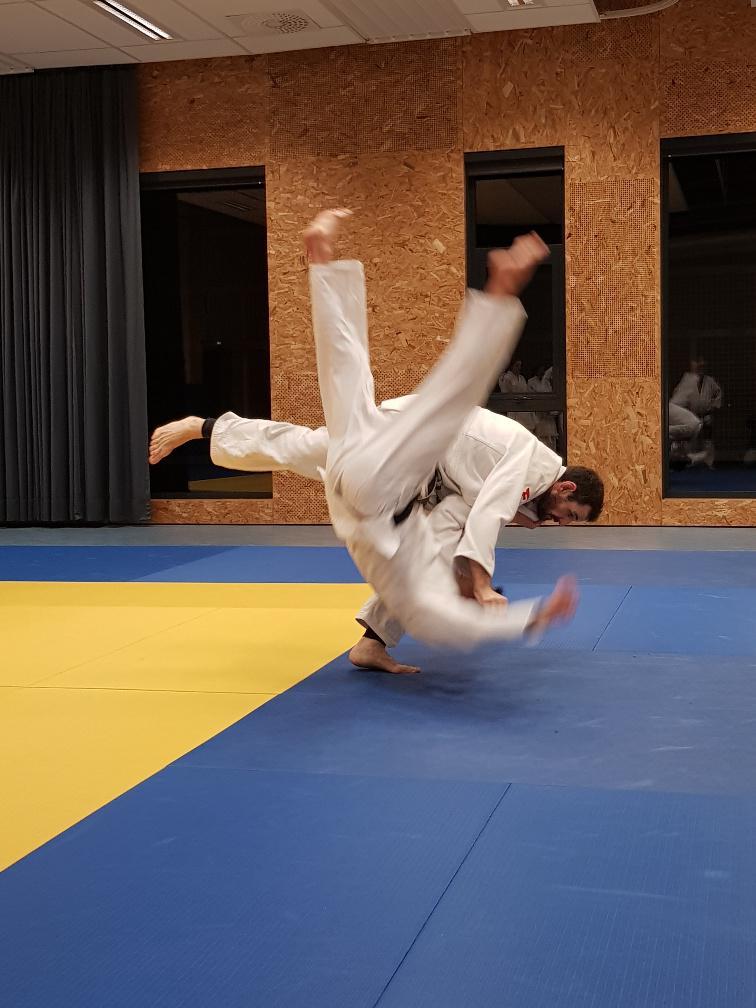 Brésilien Jiu Jitsu datant